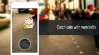 Cats GO APK