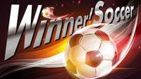 Winner Soccer Evo Elite for PC