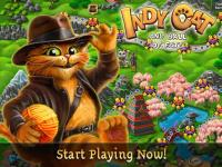 Indy Cat Match 3 for PC