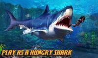 Shark.io APK
