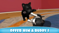 Daily Kitten : virtual cat pet APK
