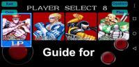 Guide for Captain Commando for PC