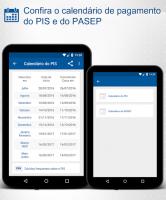 Consulta PIS PASEP Calendário for PC