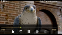 321 Media Player for PC