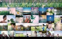 Tool for Google Photo, Picasa APK