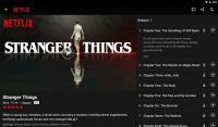 Netflix APK