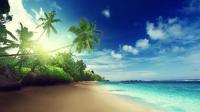 Beach Live Wallpaper APK