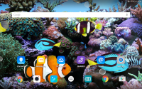 Coral Fish 3D Live Wallpaper for PC