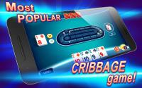 Ultimate Cribbage for PC