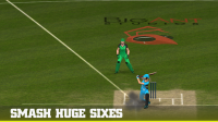 Big Bash 2016 for PC
