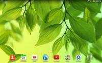 Leaf Live Wallpaper APK