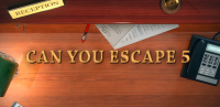 Can You Escape 5 for PC
